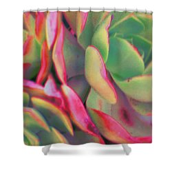 Tinted Clusters Shower Curtain
