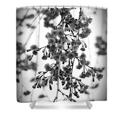 Tiny Buds And Blooms Shower Curtain
