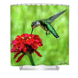 Shower Curtain featuring the photograph Tiny Feet by Sue Melvin