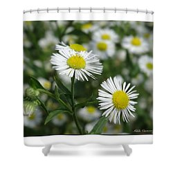 Tiny Flowers Shower Curtain by Mikki Cucuzzo