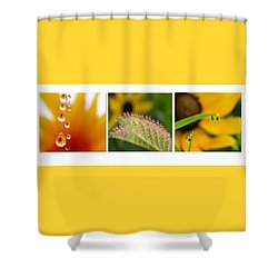 Tiny Miracles Shower Curtain by Linda  Murphy