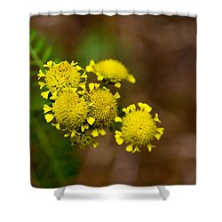 Shower Curtain featuring the photograph Tiny Petals by Erin Kohlenberg