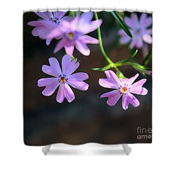 Tiny Pink Flowers Shower Curtain by John S