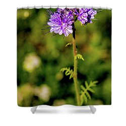 Shower Curtain featuring the photograph Tiny Puprle Flowers by Onyonet  Photo Studios