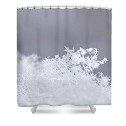 Shower Curtain featuring the photograph Tiny Worlds I by Ana V Ramirez