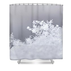 Shower Curtain featuring the photograph Tiny Worlds II by Ana V Ramirez