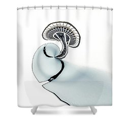 Shower Curtain featuring the photograph Tinyplanet Space Needle by Wade Brooks