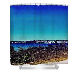 Tip Of The Mitt Shower Curtain by Randall  Cogle