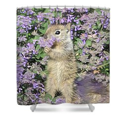 Tippy Toe Snack Shower Curtain