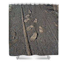 Tire Tracks And Foot Prints Shower Curtain by Heather Kirk