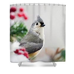 Shower Curtain featuring the photograph Titmouse Bird Portrait by Christina Rollo