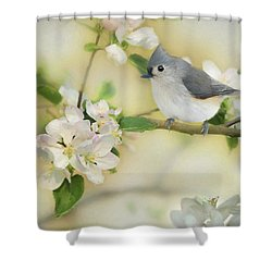 Titmouse In Blossoms 2 Shower Curtain