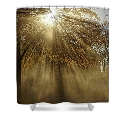 To Catch A Ray Of Sunlight Shower Curtain
