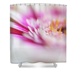 Shower Curtain featuring the photograph To Live In Dream 1. Macro Gerbera by Jenny Rainbow