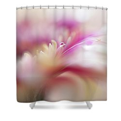 Shower Curtain featuring the photograph To Live In Dream 3. Macro Gerbera by Jenny Rainbow