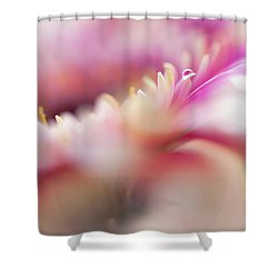 Shower Curtain featuring the photograph To Live In Dream 5. Macro Gerbera by Jenny Rainbow
