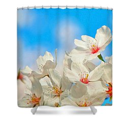 To Nature's Teachings Shower Curtain by Mitch Cat