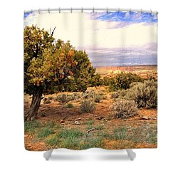 Shower Curtain featuring the photograph To The Horizon by Marty Koch