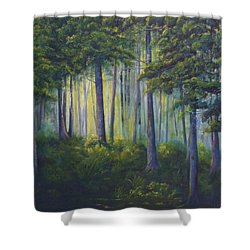 To The Light Shower Curtain by T Fry-Green