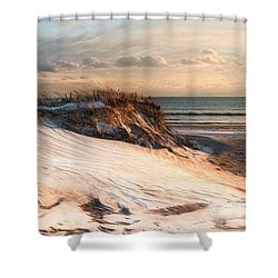 Shower Curtain featuring the photograph To The Sea by Robin-Lee Vieira