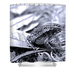 Toad Carefully Shower Curtain by D Renee Wilson