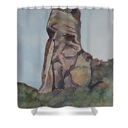 Toad Rock Shower Curtain