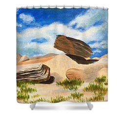 Toadstool Park Nebraska Shower Curtain