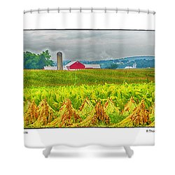 Tobacco Farm Shower Curtain by R Thomas Berner