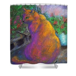 Toby's Garden Path Shower Curtain