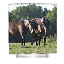 Together Shower Curtain by Gary Bridger