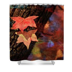 Shower Curtain featuring the photograph Together II by Toni Hopper