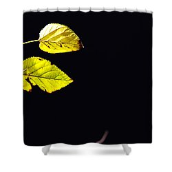 Together In Darkness Shower Curtain