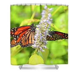 Together We Can Fly So High Shower Curtain