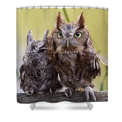 Shower Curtain featuring the photograph Togetherness by Cheri McEachin