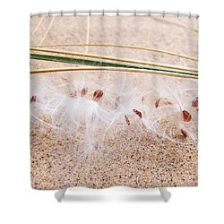 Togetherness Shower Curtain by Kathi Mirto