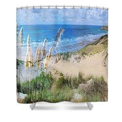 Toi Tois In Coastal  Sandhills Shower Curtain