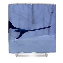 Tom Shower Curtain by Eric Tressler