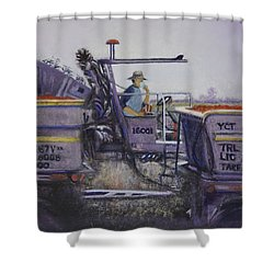 Tomato Harvest Time Shower Curtain