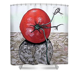 Tomato On Marble Shower Curtain by Mary Ellen Frazee
