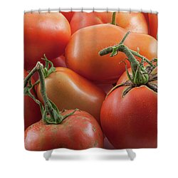 Shower Curtain featuring the photograph Tomato Stems by James BO Insogna