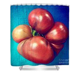 Tomatoe Shower Curtain by Suzanne Lorenz