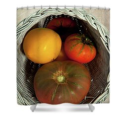 Tomatoes In A Horn Of Plenty Basket 2 Shower Curtain by Dan Carmichael