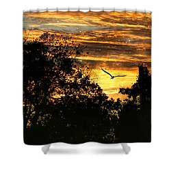 Shower Curtain featuring the photograph Tomorrow Land by Joan Bertucci