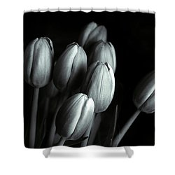 Shower Curtain featuring the photograph Tonal Tulips by Jessica Jenney