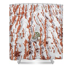 Tonan, The Aztec Goddess Of Winter Solstice  Shower Curtain