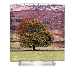 Tones Of Autumn Shower Curtain