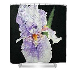 Tonto Basin Iris Shower Curtain