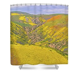 Shower Curtain featuring the photograph Top Of The Temblor Range by Marc Crumpler