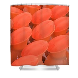 Topsy Turvy Shower Curtain
