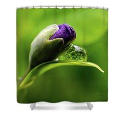 Topsy Turvy World In A Raindrop Shower Curtain by Jordan Blackstone